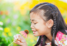 Little girl with long dark hair sitting on poppy field Stock Photos