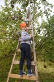 Little girl looking back while standing on ladder royalty free stock images