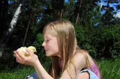 Little girl looking at chicken Stock Image