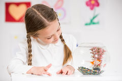 Little girl looking at gold fish Stock Photography