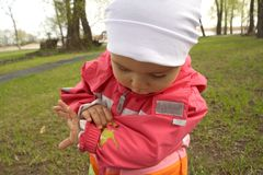 Little Girl Looking at Ladybug. On Her Coat Stock Photo