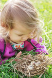 Little girl looking at nest with eggs Royalty Free Stock Photos