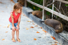 Little girl looking to sea lions Royalty Free Stock Photo