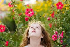 Little girl is looking up at the bee. Facial emotions of fear, f. Right royalty free stock photos
