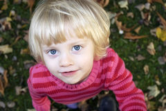 Little girl looks with big eyes Royalty Free Stock Photos