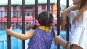 Little girl in the zoo. A little girl looks through the metal bars of the cage in the zoo. Next to her is her mother stock video footage