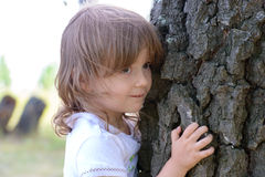 The little girl looks out from behind a tree trunk Royalty Free Stock Image