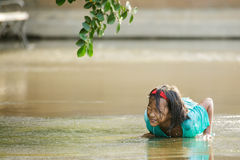 Little girl lying in a puddle Stock Photos