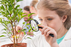 Little girl with magnifying glass and plant in laboratory Royalty Free Stock Photography
