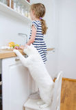 Little girl making meal. Cat stealing food. Royalty Free Stock Image