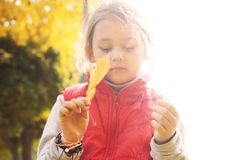 Little girl with maple leaf in  hand Stock Photos