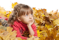 Little girl with maple leaves Stock Image