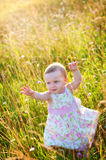 Little girl in the meadow Royalty Free Stock Photos