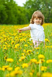 Little girl in a meadow Royalty Free Stock Photography