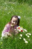 Little girl in a meadow Stock Photos