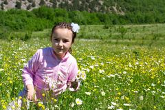 Little girl in a meadow Stock Photography