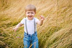 Little girl in a meadow Stock Photos