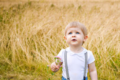 Little girl on a meadow Royalty Free Stock Photo