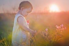 Little girl in a meadow Stock Photo