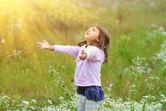 Little girl on the meadow Stock Photos