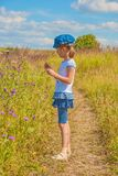 Little girl in the meadow Royalty Free Stock Photography