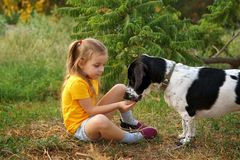 Little girl and mongrel dog outdoors royalty free stock photo