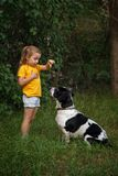 Little girl and mongrel dog outdoors stock image