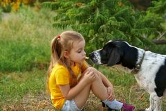 Little girl and mongrel dog outdoors. Child treats her own pet`s cheese. Children and animals stock image