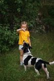 Little girl and mongrel dog outdoors stock images