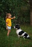 Little girl and mongrel dog outdoors stock photos