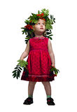 Little girl with a mountain ash Royalty Free Stock Photo