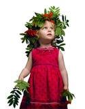 Little girl with a mountain ash Stock Photos