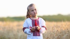 Little girl national shirt. Little girl in the Ukrainian national shirt near a wheat field stock footage
