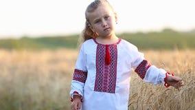 Little girl national shirt. Little girl in the Ukrainian national shirt near a wheat field stock video footage