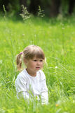 Little girl on nature Stock Photography