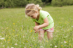 Little girl in nature Stock Photo