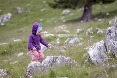 Little girl in nature Stock Photos