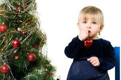Little girl near the Christmas tree Royalty Free Stock Photo