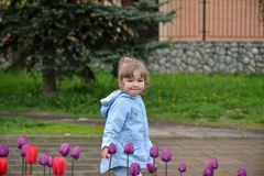 Little girl near the flower beds with tulips Royalty Free Stock Photos