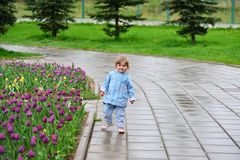 Little girl near the flower beds with tulips. Little girl near the flower beds with a tulips Royalty Free Stock Photos