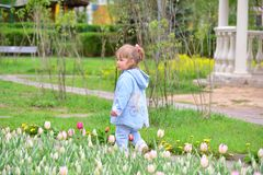 Little girl near the flower beds with tulips Royalty Free Stock Images