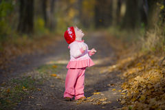 The little girl in the oak grove Royalty Free Stock Images