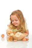 Little girl observing her chicken babies stock image