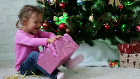 Little girl openning gift box near Christmas tree. Child tearing paper off gift stock video footage