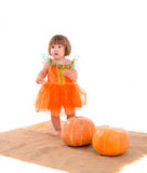 Little girl in orange costume with pumpkins Royalty Free Stock Image