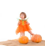 Little girl in orange costume with pumpkins Royalty Free Stock Photography