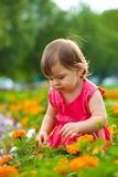Little girl in orange flowers Royalty Free Stock Images