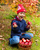Little girl with organic apples Stock Photo