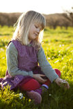 Little girl outdoors. Cute little girl outdoors sitting on a green field with flowers royalty free stock images