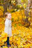 Little girl outdoors on autumn day Stock Photography